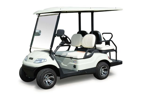 2 + 2 Multi Passenger Electric Vehicle