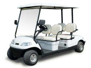 Large EP 4 (2+2) Multi Passenger Electric Vehicle