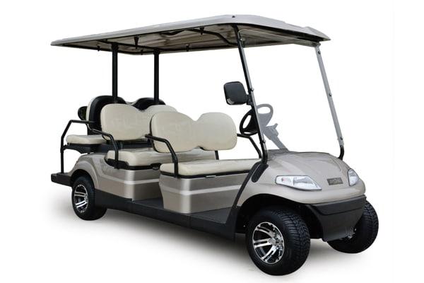 6 Seater Multi Passenger Electric Vehicle